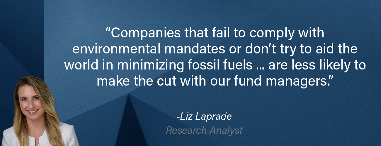 """Liz Laprade is pictured with the quote: """"Companies that fail to comply with environmental mandates or don't try to aid the world in minimizing fossil fuels... are less likely to make the cut with our fund managers."""""""